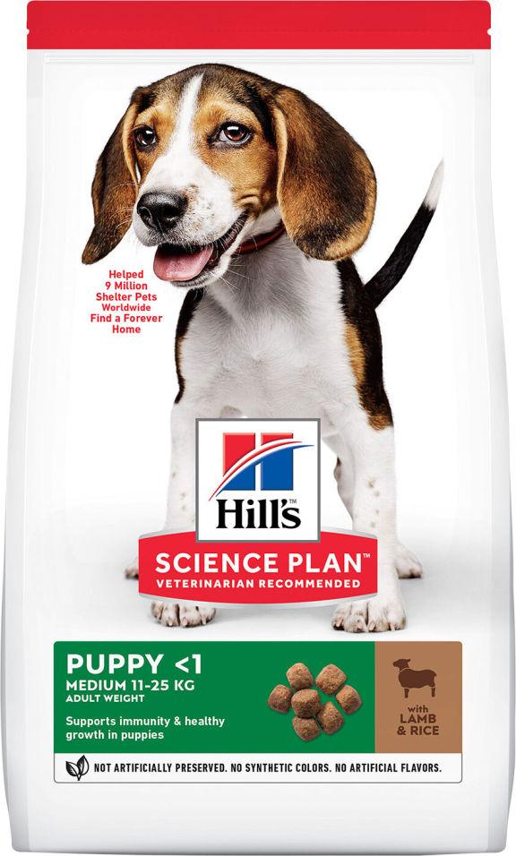 Сухой корм для щенков Hills Science Plan для здоровья кожи и шерсти ягненок с рисом 2.5кг